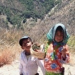 Cuanto cuesta viajar en el Chepe – Parada: Creel