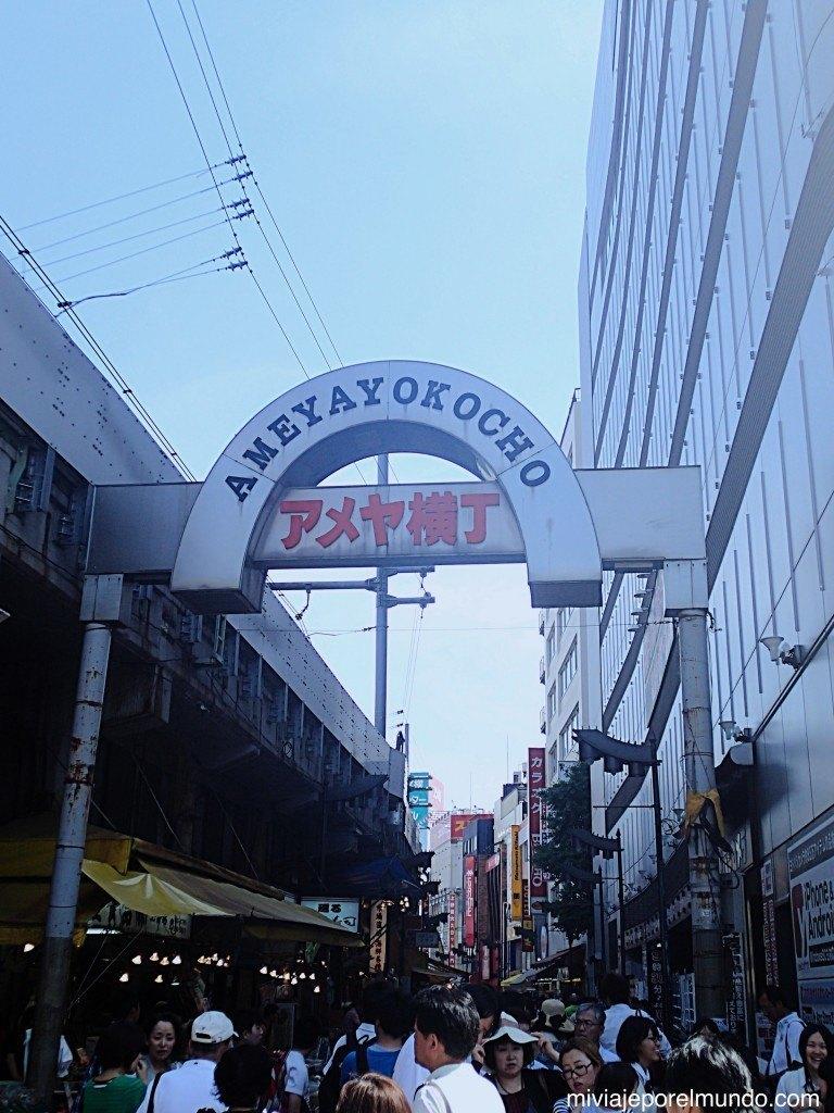 Itinerario Tokio en 2 dias