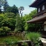 Japón, donde la tradición y la modernidad convergen