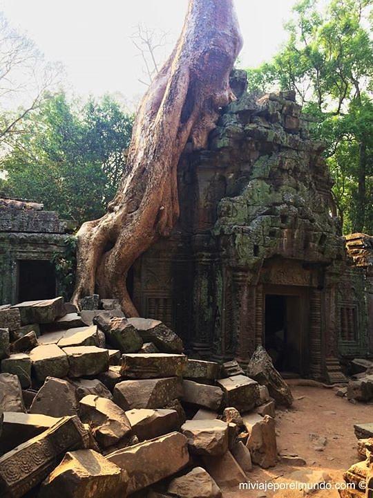 Cambodia Angkor 2