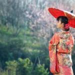 Qué ver en Japón en 15 días. Guía Completa