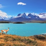 17 consejos para viajar a Chile por primera vez