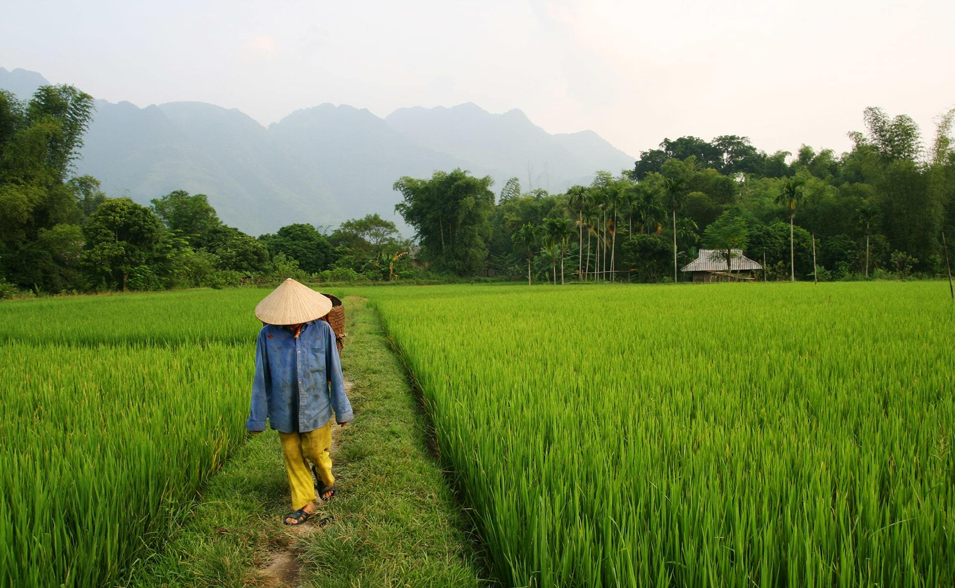 lugares imprescindibles en vietnam-min