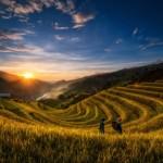Cuánto cuesta viajar a Vietnam