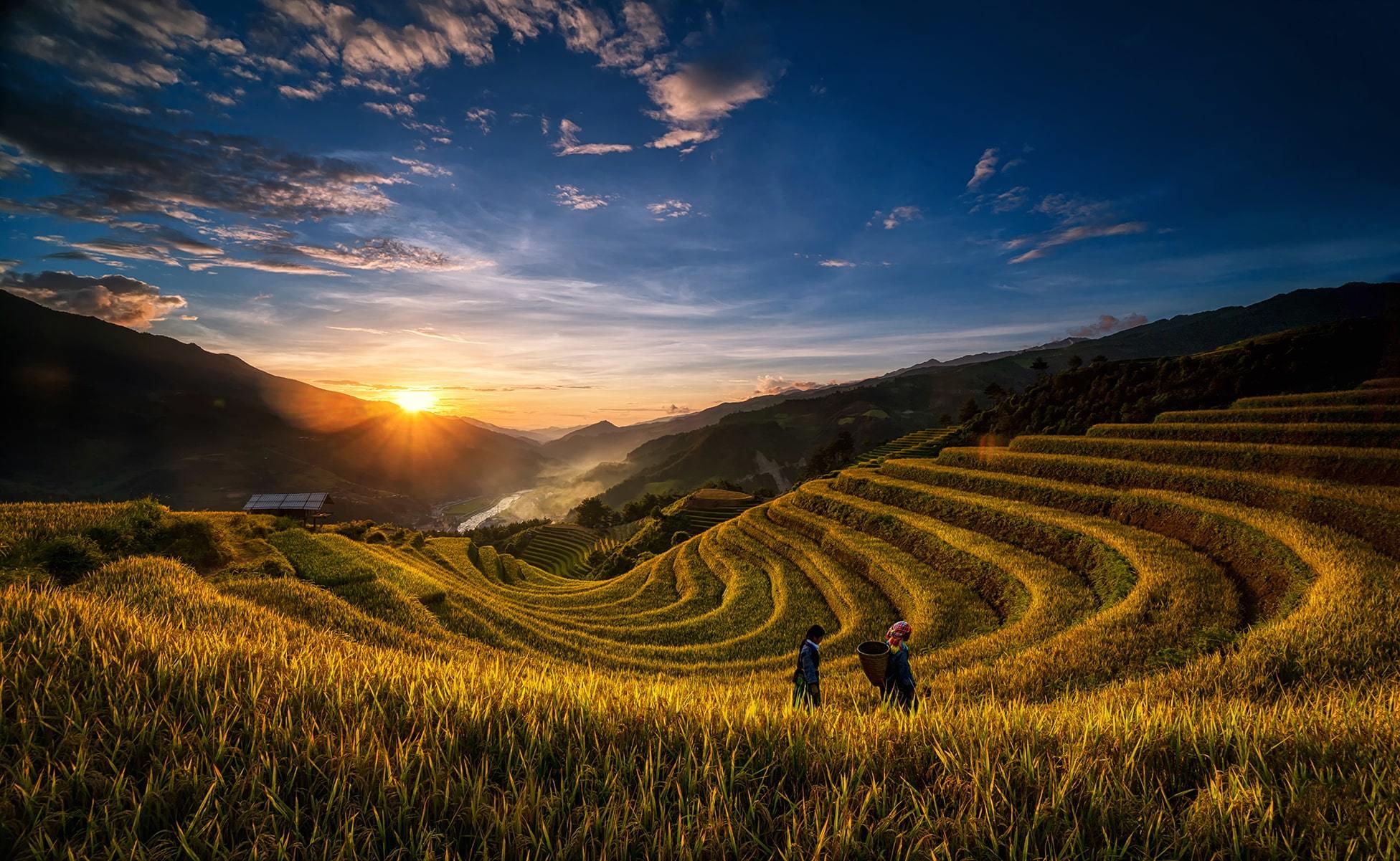 cuanto cuesta vietnam-min